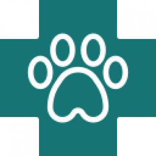 Healthy Paws Pet Services
